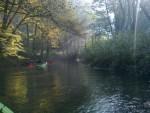 Spływy kajakowe Łobżonka