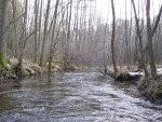 spływy kajakowe Rurzyca